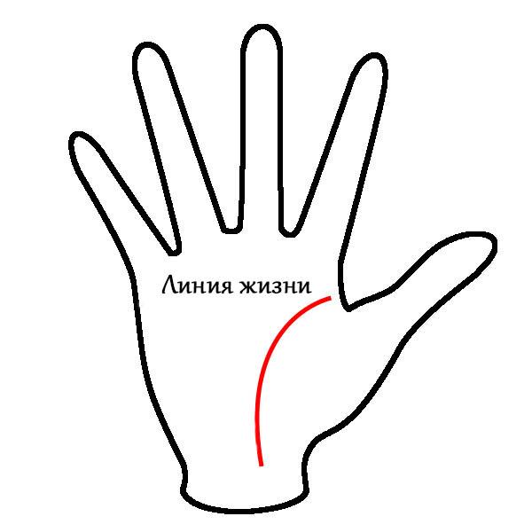 Линия жизни на руке