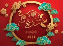Китайский Новый год — 2021: какого числа и как встречать год Быка