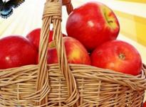 Яблочный Спас в 2021 году: что можно и что нельзя делать в этот день