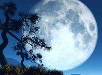 Лунный календарь на июль 2020 года: фаза Луны сегодня