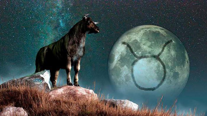 Что лучше делать когда Луна в Тельце