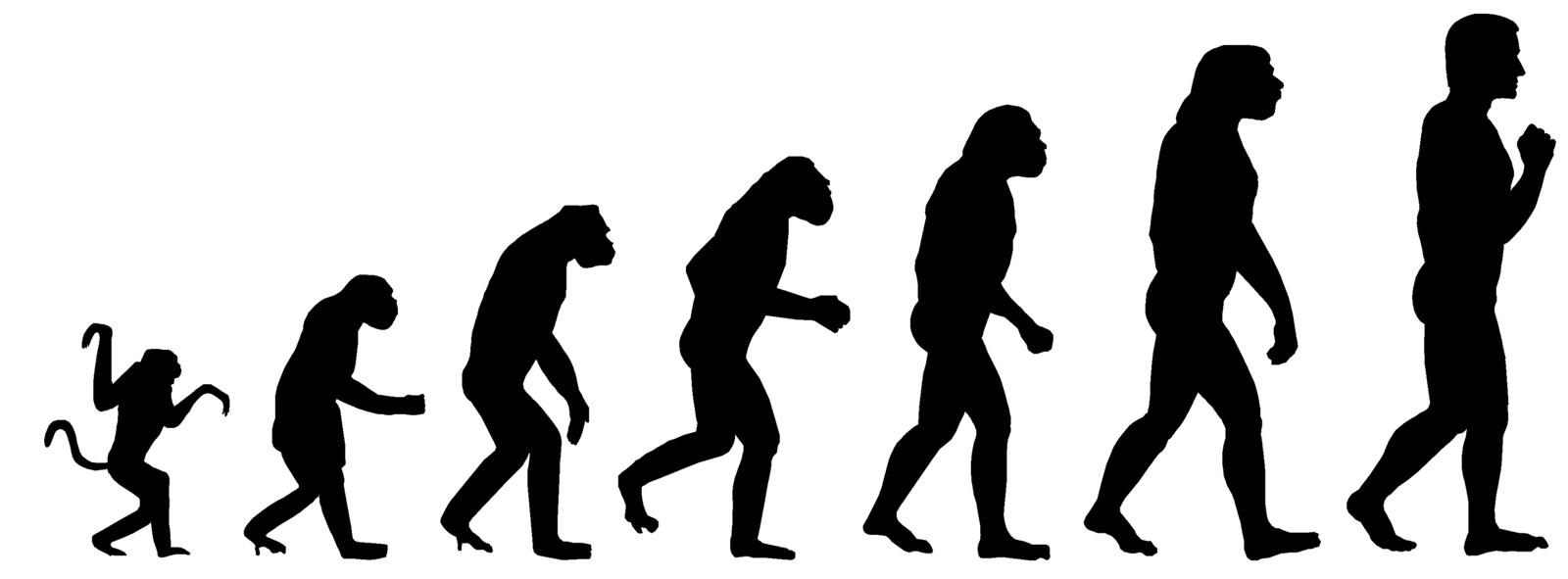 Новые открытия могут опровергнуть теорию Дарвина