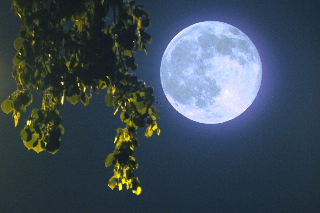 маг, ночь в августе картинки сделать скриншот