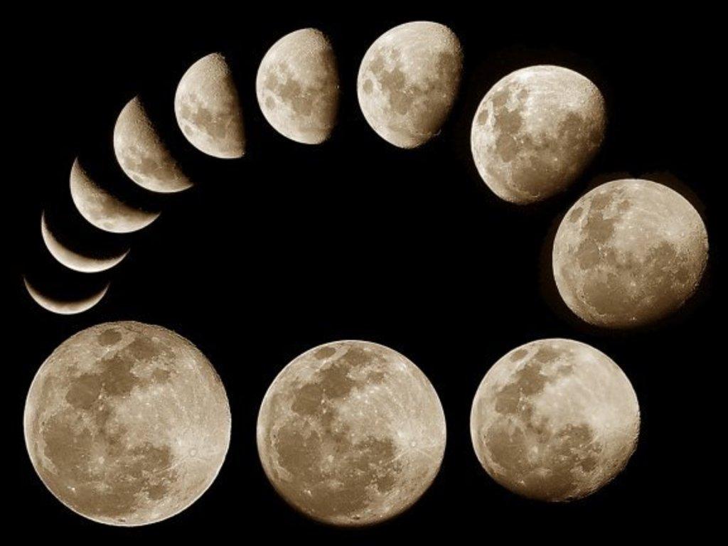 Картинки пони папа луны и селестии несколько способов