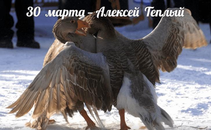 Сегодня 30 марта 2019 года праздник Теплый Алексей: что нельзя делать в этот день