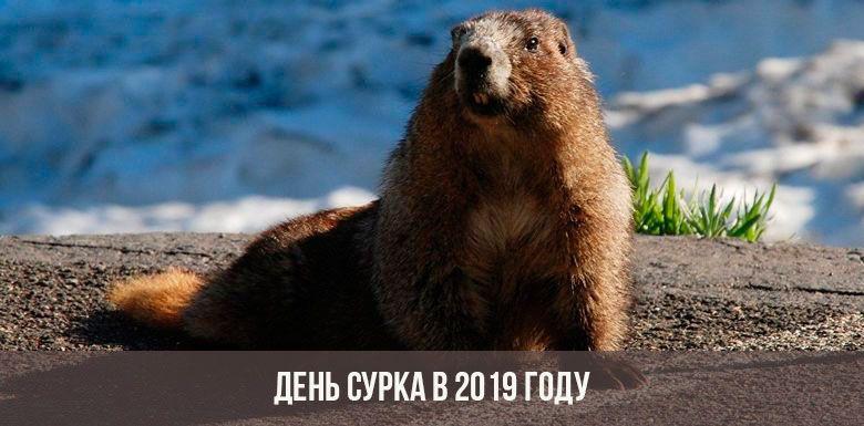 День сурка: праздник 2 февраля 2019 года