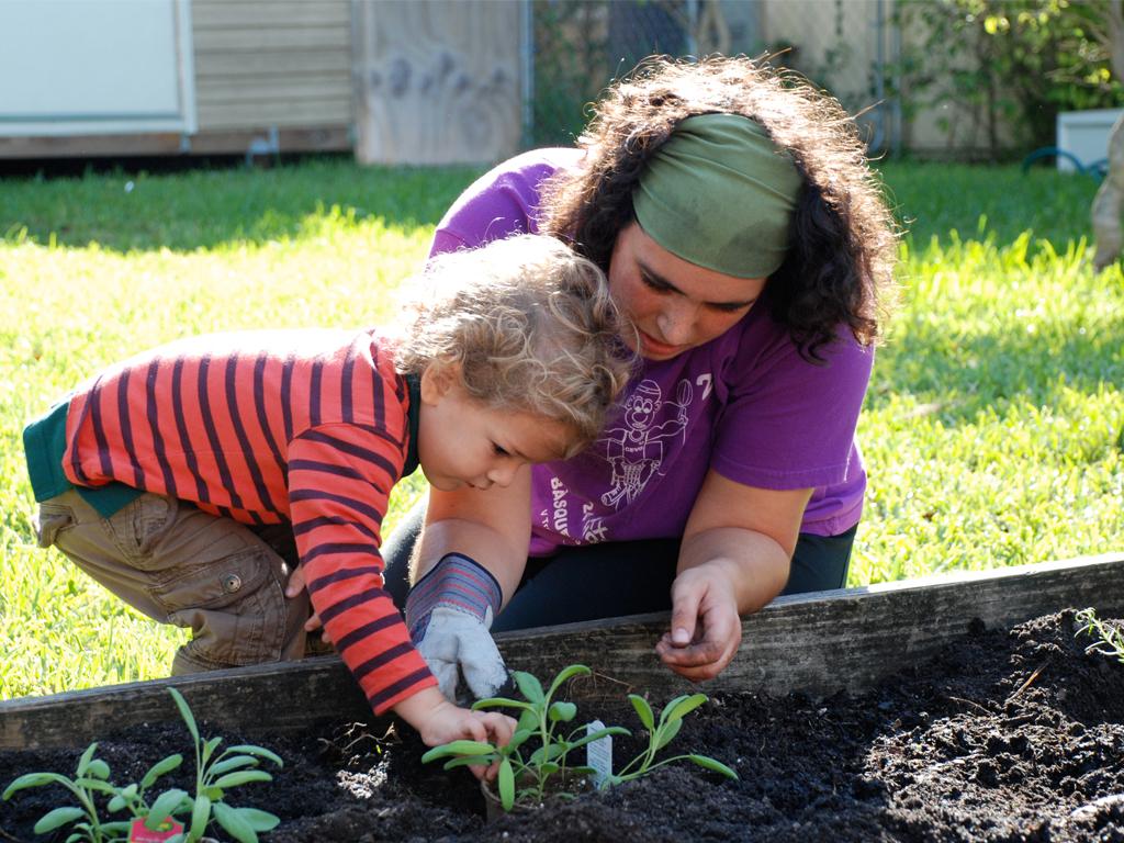 Лунный посевной календарь садовода и огородника на апрель 2019 года