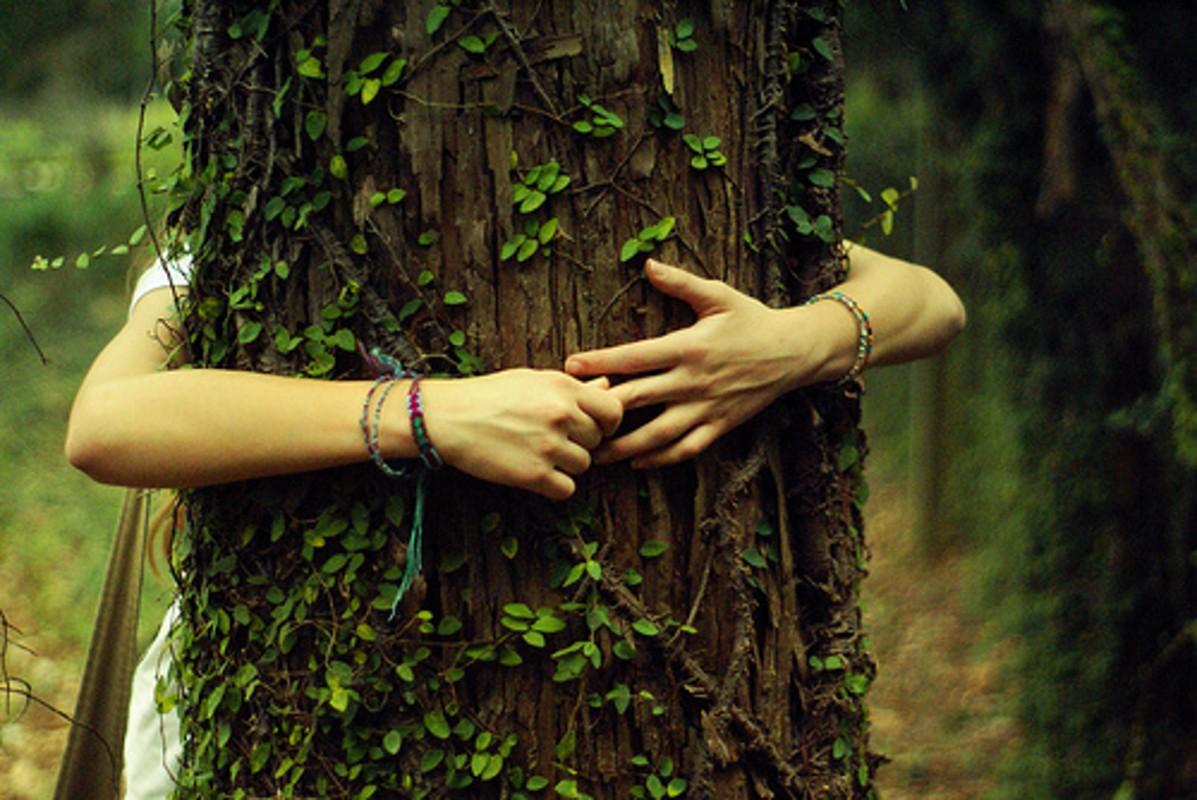 картинка людей в гармонии с природой этих испытаний