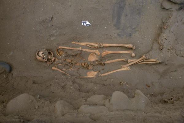В Перу найдены скелеты людей с четырьмя ногами и руками