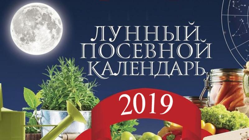 Лунный посевной календарь садовода и огородника на сентябрь 2019 года: таблица и Луна в знаках Зодиака