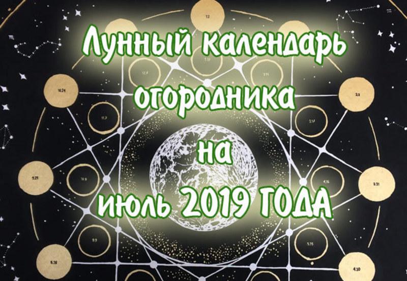 Самый точный лунный посевной календарь на июль 2019 года: таблица и Луна в знаках Зодиака