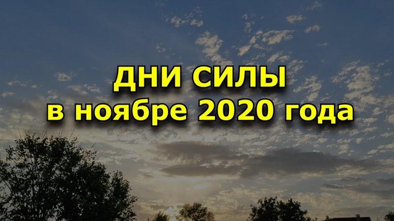 Дни силы в ноябре 2020 года