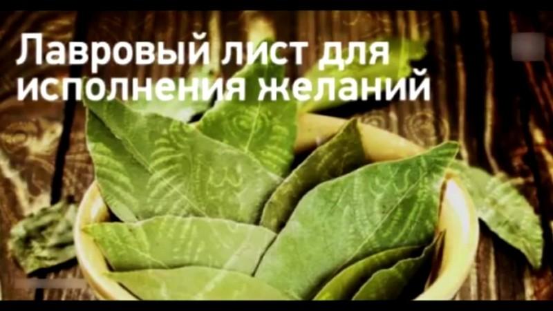 Ритуалы в Новолуние на исполнение желания: загадать желание в Новолуние с лавровым листом