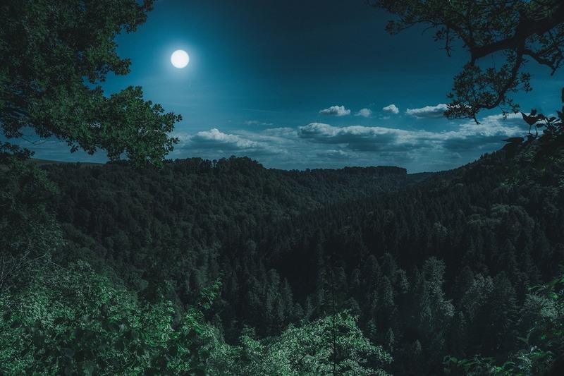 Когда растущая Луна в апреле 2019 года