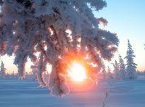 Зимнее солнцестояние 2020: самый короткий день в году