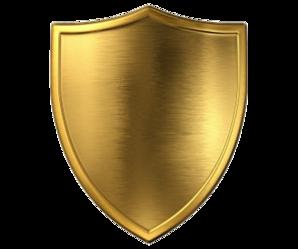 """Энергетическая защита """"Золотой щит"""""""